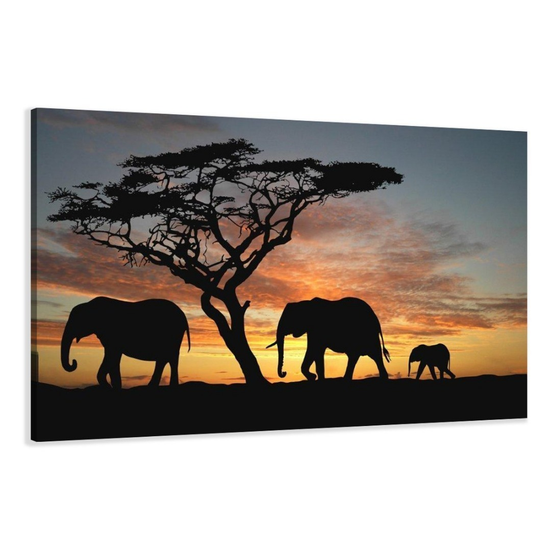 afrika olifant 120 x 80 cm 120 x 80 cm 64 alles voor uw huis inrichting. Black Bedroom Furniture Sets. Home Design Ideas