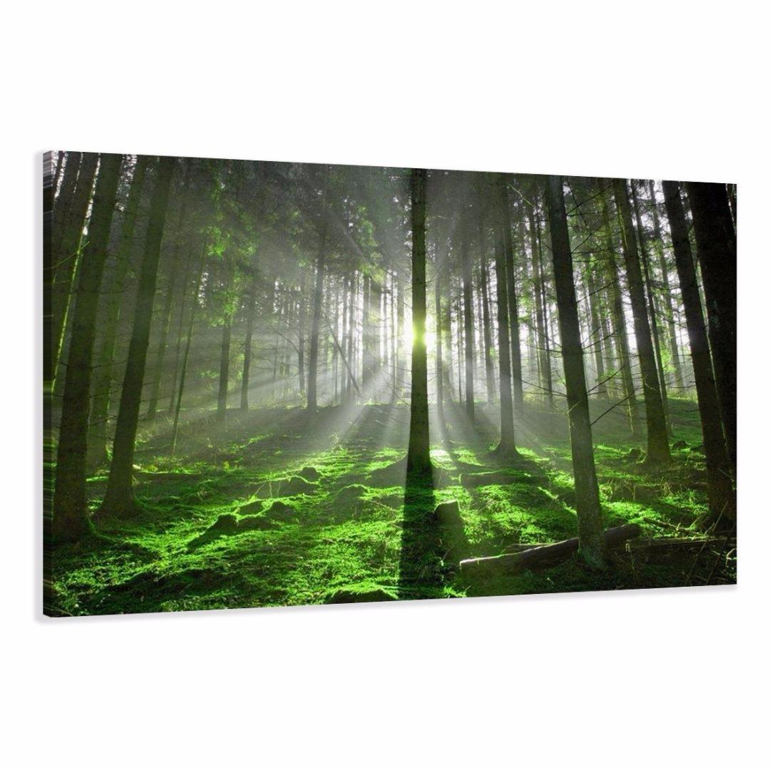 groen bos 120 x 80 cm 120 x 80 cm 64 alles voor uw huis inrichting. Black Bedroom Furniture Sets. Home Design Ideas